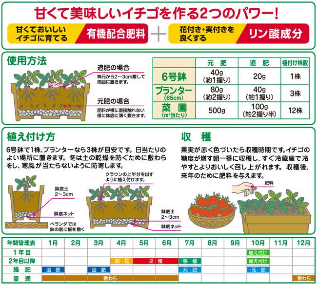 イチゴの専用肥料