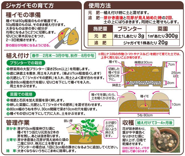 ジャガイモの栽培・育て方