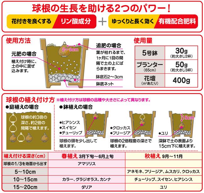 チューリップ・水仙(スイセン)・ユリなどの球根植物の専用肥料