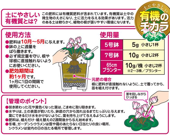 シクラメン、ガーデンシクラメンの専用肥料