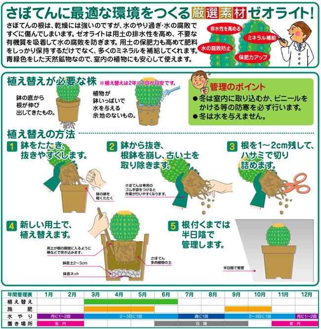 サボテンと多肉植物栽培専用の培養土