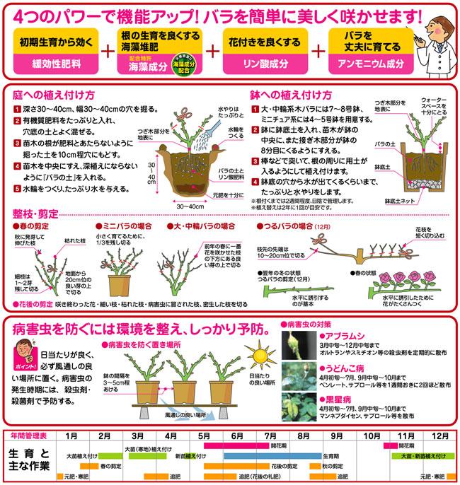 薔薇(バラ)専用の培養土