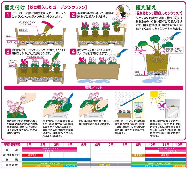 シクラメン栽培用の培養土(専用土)