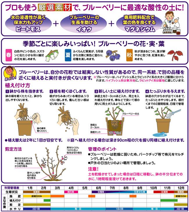 ブルーベリーやツツジ専用の培養土(専用土)