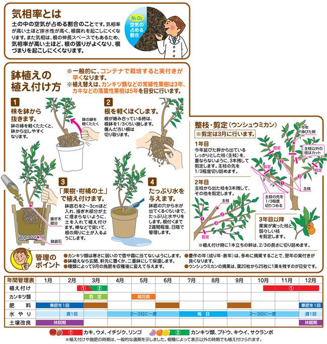 果樹・柑橘の培養土(専用土)