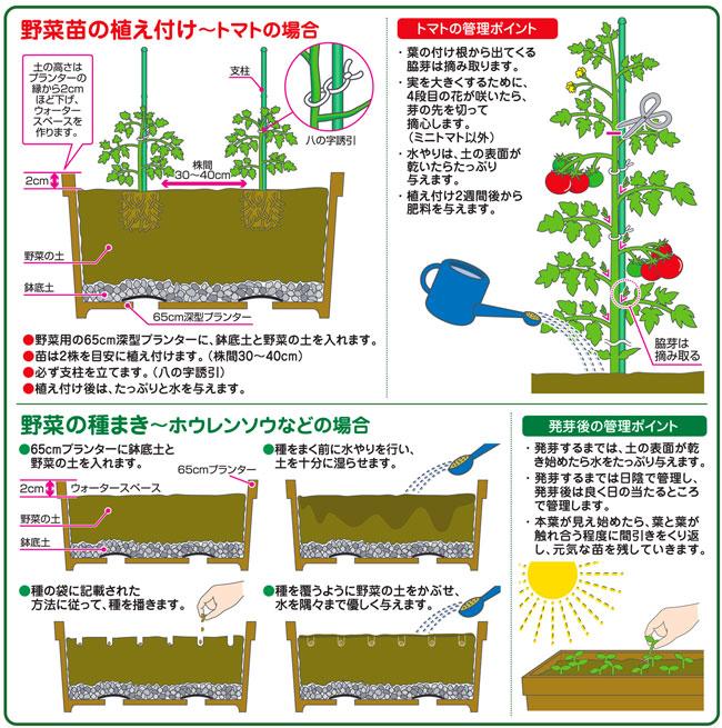 有機野菜の家庭菜園用の培養土
