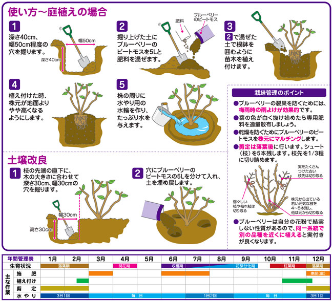 ブルーベリー栽培用の土壌改良材