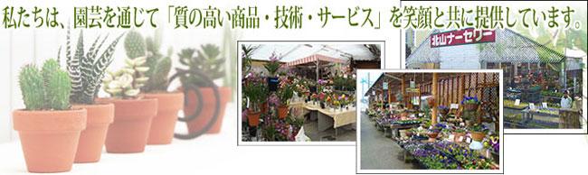 花苗・野菜苗の園芸お役立ちショップ「花育通販」