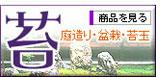 苔(コケ・苔玉)の販売店「花育通販」