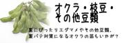 オクラや枝豆(エダマメ)その他豆類の苗を販売しております